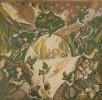Молчанова Г.П. Курган с зимними цветами и птицами. 1980. Бумага, цветная линогравюра. 50х51. КП-1025, Г-671